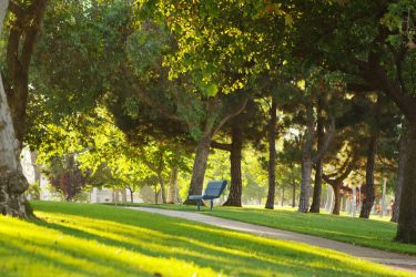 Park near Eleven64
